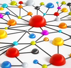 Size of Network